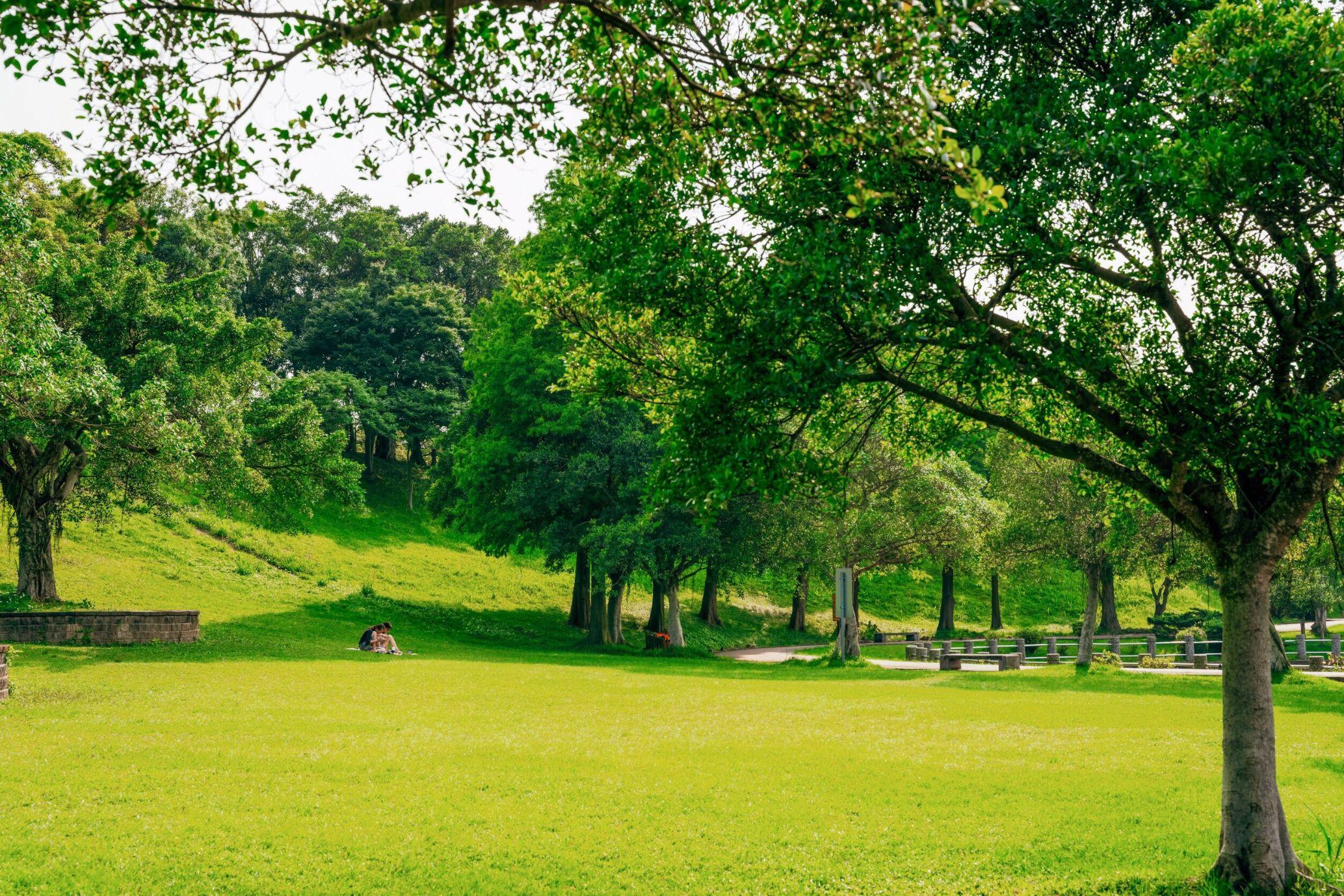 志清湖邊草皮野餐